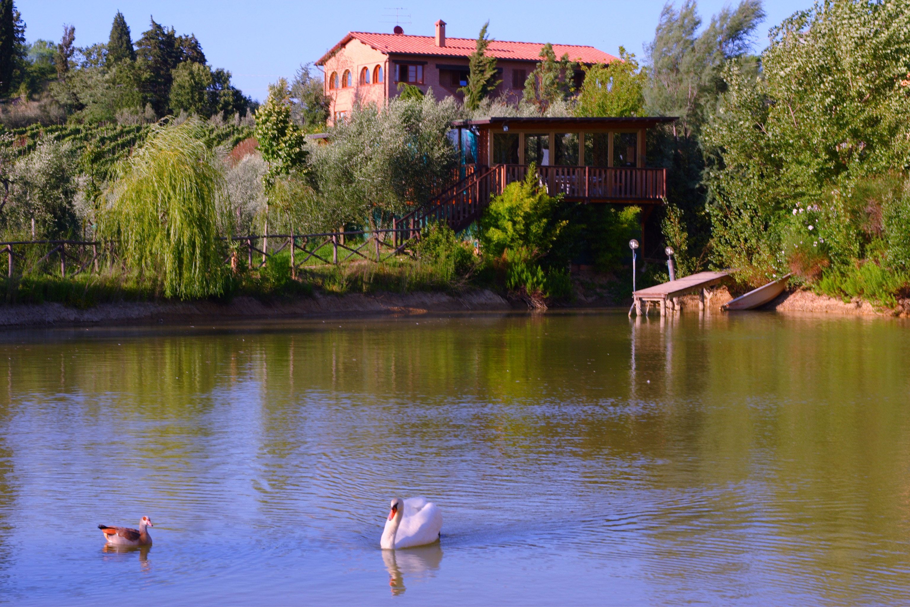 Agriturismo Cameli, immerso tra le colline del Chianti fiorentino.