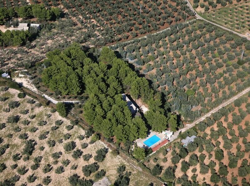 Case Vacanza Residence San Luca: siamo a a Vieste, nel Parco Nazionale del Gargano, in una splendida pineta circondata da ulivi.